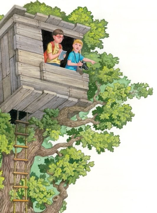 Magic Tree House Tipton County Library